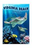 Virginia Beach, Virginia - Sea Turtle Swimming Poster