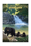 Great Smoky Mountains, North Carolina - Falls Poster by  Lantern Press