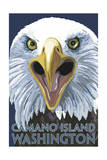 Camano Island, Washington - Eagle Up Close Print by  Lantern Press