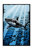 Great White Shark - Scratchboard Poster by  Lantern Press