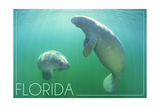 Florida - Manatees Underwater Prints by  Lantern Press
