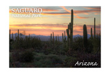 Saguaro National Park, Arizona - Cactus at Twilight Prints by  Lantern Press