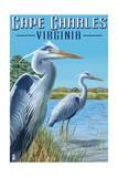 Cape Charles, Virginia - Blue Heron Poster