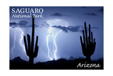 Saguaro National Park, Arizona - Lightning at Night Posters