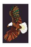 Americana - Soaring Eagle Art by  Lantern Press