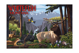 Whitefish, Montana - Wildlife Utopia Poster by  Lantern Press