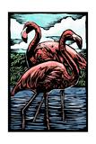 Flamingos - Scratchboard Prints by  Lantern Press