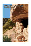Walnut Canyon National Monument, Arizona Prints by  Lantern Press