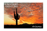Saguaro National Park, Arizona - Orange Sunset Prints by  Lantern Press