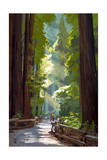 Pathway in Forest Prints by  Lantern Press
