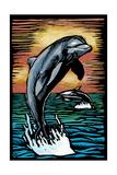 Dolphins - Scratchboard Art