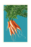 Carrots Posters by  Lantern Press