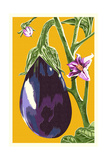 Eggplant Poster by  Lantern Press