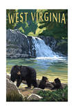 West Virginia - Waterfall and Bears Posters by  Lantern Press