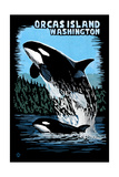 Orcas Island, Washington - Orca and Calf Scratchboard Posters by  Lantern Press