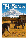 Mt. Shasta - Weed, California - Horses and Mountain Posters