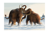 Wooly Mammoths Art by  Lantern Press