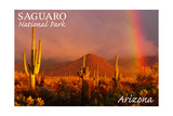 Saguaro National Park, Arizona - Rainbow Print by  Lantern Press