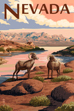 Nevada - Bighorn Sheep Prints by  Lantern Press