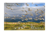 Oregon Coast - Seagulls Prints by  Lantern Press