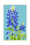 Bluebonnet Prints by  Lantern Press