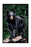 Black Bear - Scratchboard Posters by  Lantern Press