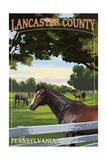 Lancaster County, Pennsylvania - Horse Pasture Prints by  Lantern Press