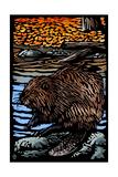 Beaver - Scratchboard Plakaty autor Lantern Press