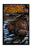 Beaver - Scratchboard Posters by  Lantern Press