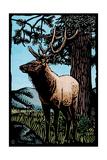 Elk - Scratchboard Print by  Lantern Press