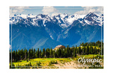 Olympic National Park - Hurricane Ridge Visitor Center Print by  Lantern Press