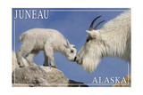 Juneau, Alaska - Mountain Goat and Kid Art by  Lantern Press