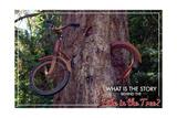 Vashon, Washington - Bike in Tree Posters by  Lantern Press