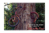 Vashon, Washington - Bike in Tree Posters