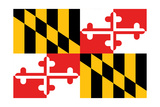 Maryland - State Flag Print by  Lantern Press
