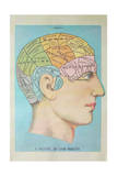 A Picture of Good Health - Vintage Cognitive Science Lithograph Prints