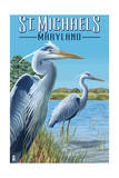 St. Michaels, Maryland - Blue Herons Posters by  Lantern Press