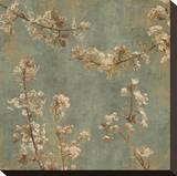 Morning Blossom I Stretched Canvas Print by John Seba
