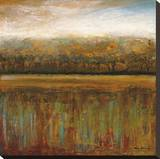 Early Days I Stretched Canvas Print by Mike Klung