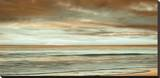 The Surf Stretched Canvas Print by John Seba