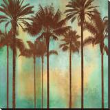 Aqua Palms II Stretched Canvas Print by John Seba