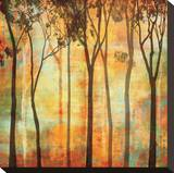 Magical Forest I Stretched Canvas Print by Chris Donovan