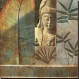 Palm Garden I Stretched Canvas Print by John Seba