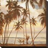 Palms on the Water I Stretched Canvas Print by John Seba
