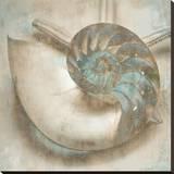 Coastal Gems IV Reproduction sur toile tendue par John Seba