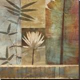 Palm Garden II Stretched Canvas Print by John Seba
