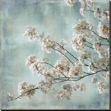 Aqua Blossoms I Stretched Canvas Print by John Seba