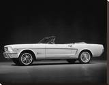 Ford Mustang Convertible, 1964 Stretched Canvas Print