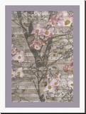 Dogwood Dance II Stretched Canvas Print by Jennifer Goldberger