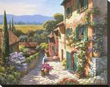 Spring in the Valley Stretched Canvas Print by Sung Kim